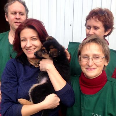 Волонтерская поездка в Зоозащитный центр «Новый Ковчег»