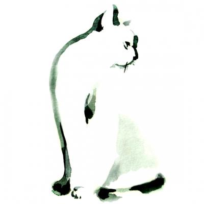 Кошки. Мастер-класс по китайской живописи