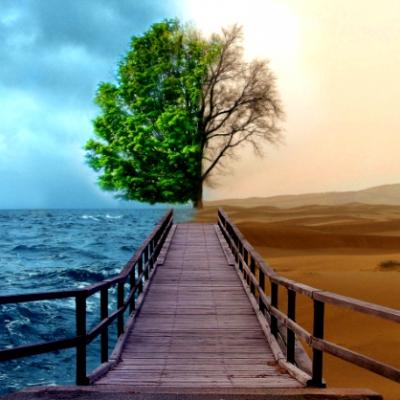 Практикум «Три вопроса к смерти: Когда? Куда? Почему?»